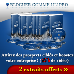 http://www.conseilsmarketing.com/wp-content/banner2.png