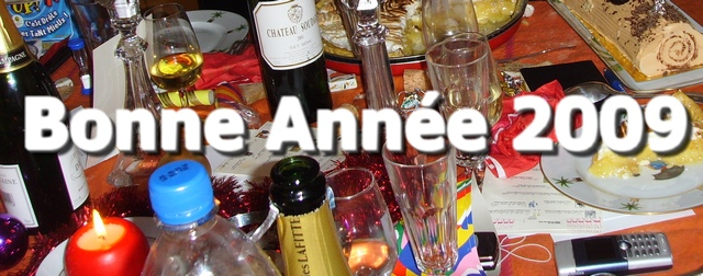 bonne année marketing 2009