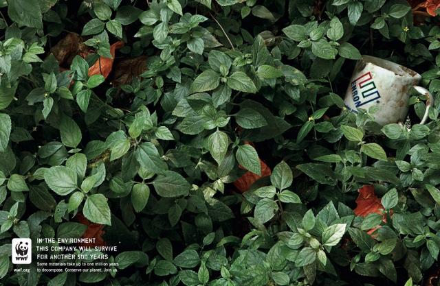 pub écologie amazonie