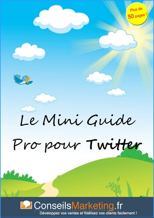 Le mini guide pro pour twitter