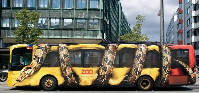 pub zoo bus