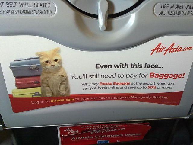 pub avion baggage