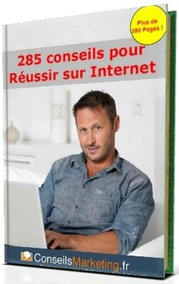 guide 255 conseils pour réussir sur Internet