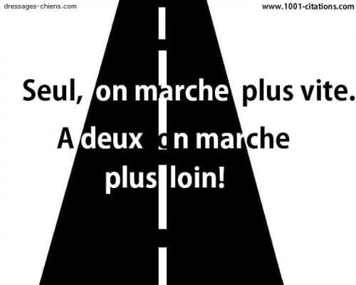Les conseils d'un Pro de l'efficacité, Alexandre Philippe de C'éclair ! 6