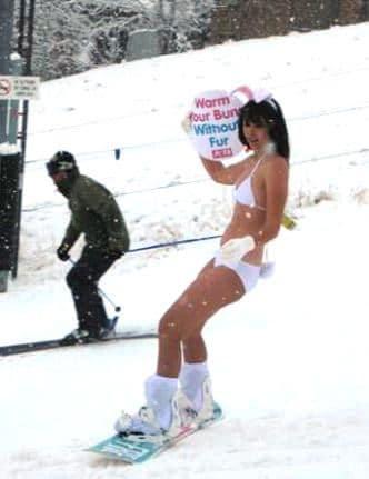 Snowboard Bunny