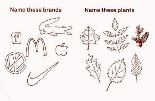 brand-recognition-vs-nature-recognition