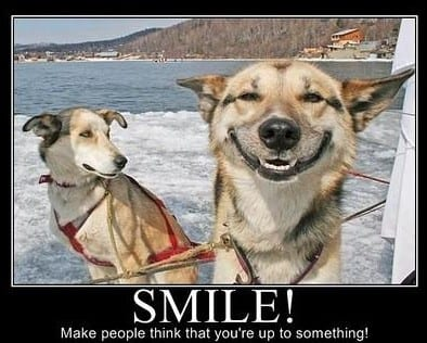 funny-life-related-motivators-smile