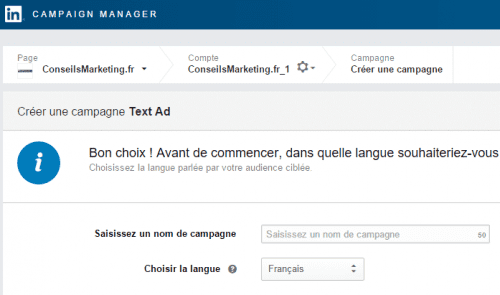 langue linkedin ads