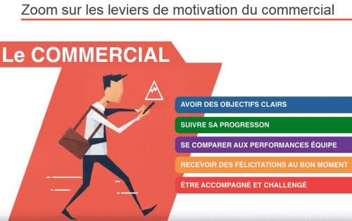 profil commercial