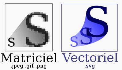 fichier svg