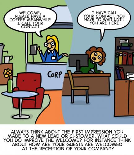 The Customer Experience Cartoon - English version 35