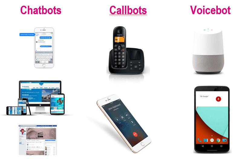 La définition du Voicebot 1