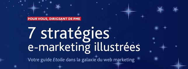 livre marketing esc lille - stratégie emarketing PME
