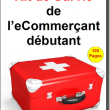 5 conseils pour bien débuter dans l'eCommerce - René Cotton Wizishop 6