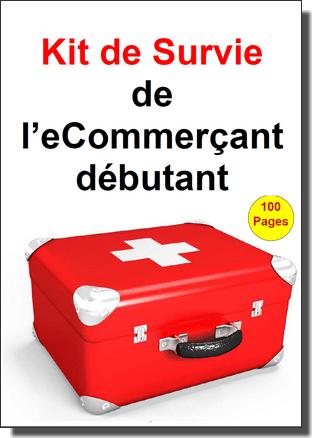 5 conseils pour bien débuter dans l'eCommerce - René Cotton Wizishop 11