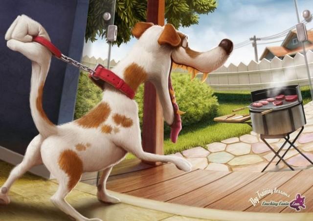 pub dressage chien