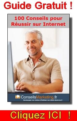 100 Conseils Pour Réussir sur le Web 1
