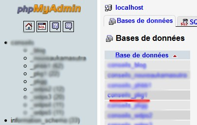 choix BDD My SQL
