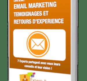 """Livre Blanc : """"Email Marketing : Témoignages et retours d'expérience"""" 4"""