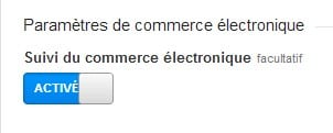 google analytics activié