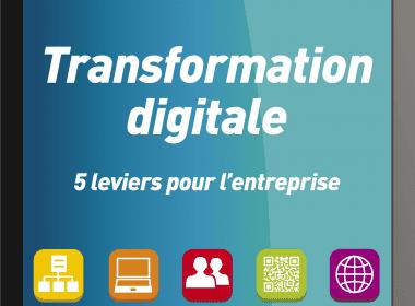 la transformation digitale - David Fayon