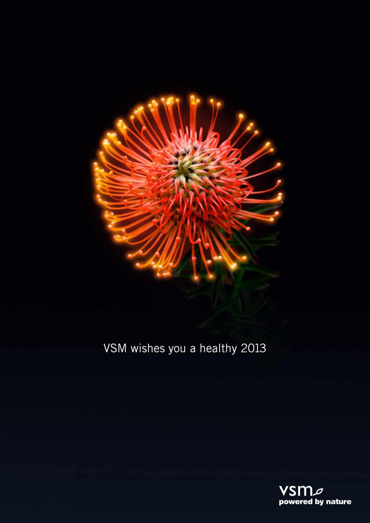vsm-fireworks02