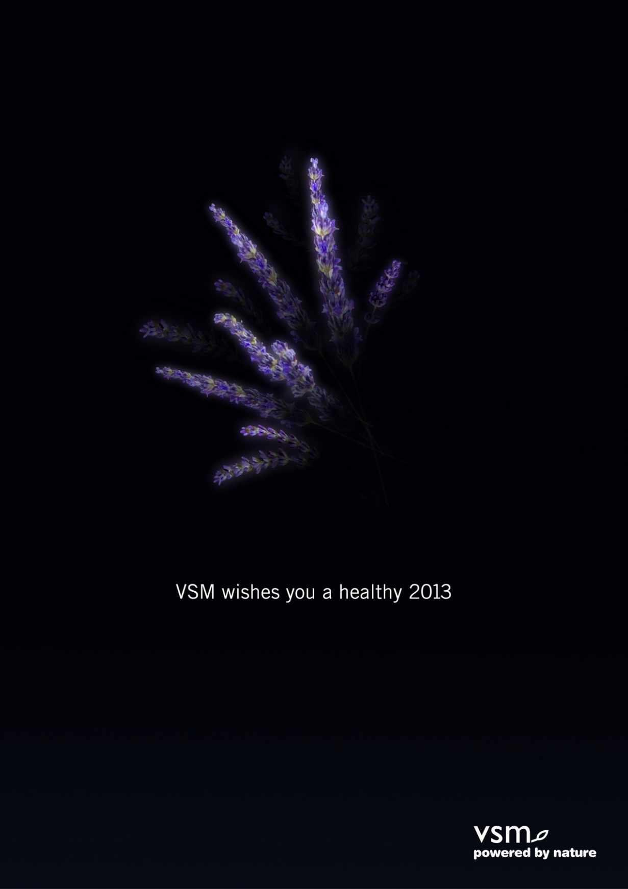vsm-fireworks03
