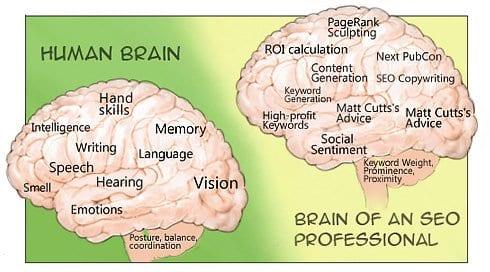 seo-brain