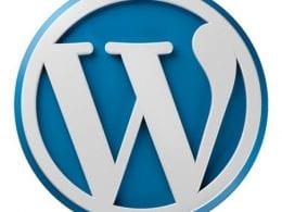 Quelles évolutions à venir pour Wordpress ? - Evan Salomon d'Automattic 3