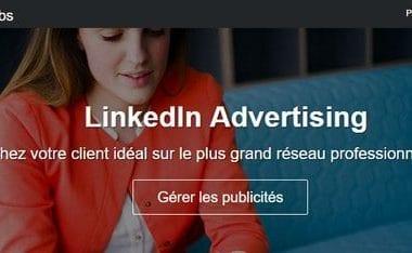 Linkedin Ads, la publicité ciblée pour le B2B - Mini formation Linkedin Ads 5