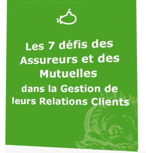 Livre Blanc : Les défis de la Relation Clients dans les Assurances & les Mutuelles 4
