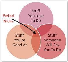 perfect-niche-financialadvisercoach-com_