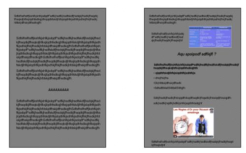 seo-wordpress