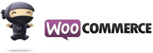 Quelle CMS choisir pour créer son site eCommerce? 6
