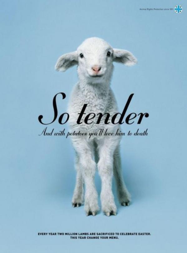 Les plus belles et plus drôles pubs sur Pâques - Best Easter Ads 35
