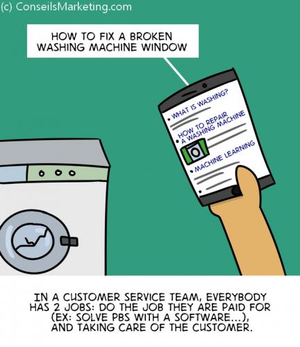 The Customer Experience Cartoon - English version 67