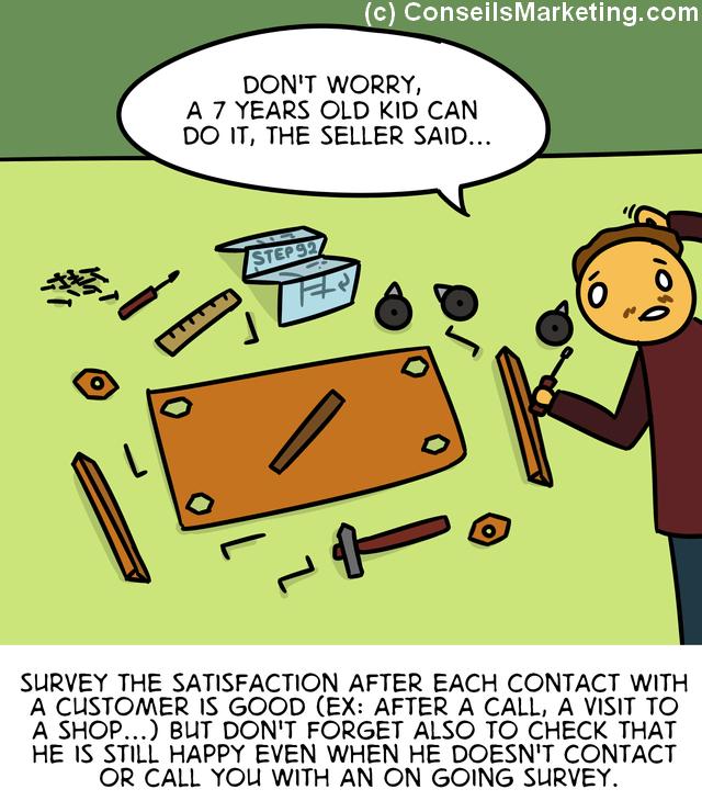 The Customer Experience Cartoon - English version 71