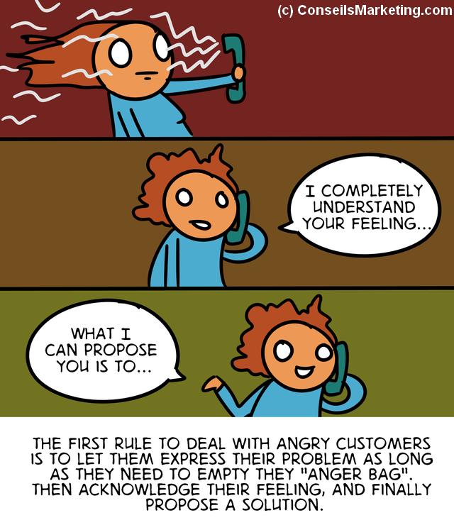 The Customer Experience Cartoon - English version 69