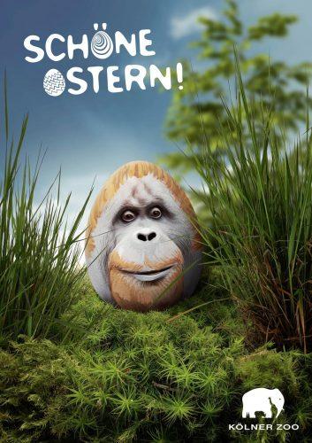 Les plus belles et plus drôles pubs sur Pâques - Best Easter Ads 57