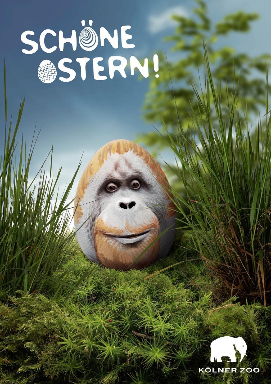 Les plus belles et plus drôles pubs sur Pâques - Best Easter Ads 54