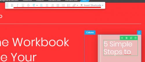Mini formation : créez une Landing Page avec Thrive Themes + 3 exemples de landing pages à télécharger ! 26