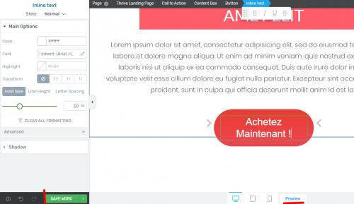 Mini formation : créez une Landing Page avec Thrive Themes + 3 exemples de landing pages à télécharger ! 31