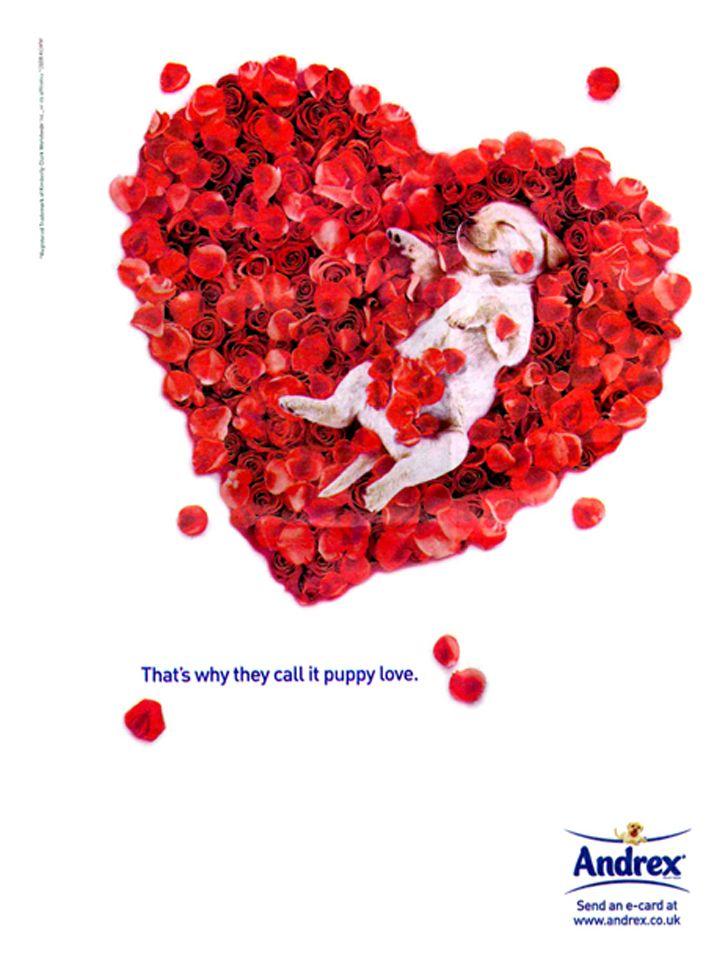 Les plus belles publicités sur la Saint Valentin... de quoi devenir Romantique - creative valentine's day ads 1
