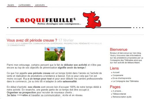 Vivre de son Blog : 35 000 € de chiffre d'affaires avec un blog de niche et à mi-temps ! 8