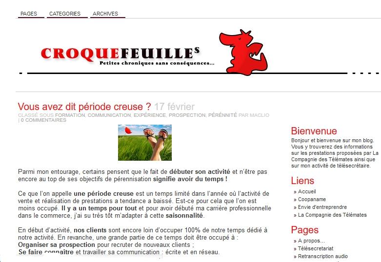 Vivre de son Blog : 35 000 € de chiffre d'affaires avec un blog de niche et à mi-temps ! 5