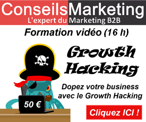 formation au growth hacking