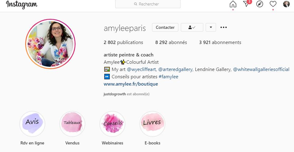 11 conseils pour se faire connaître en tant qu'artiste peintre via Instagram - Instagram artiste peintre! 9