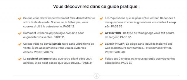 Ma landing page convertit à 74,17% ! Voici tous ses secrets - Exemple de Landing Page Wordpress 14