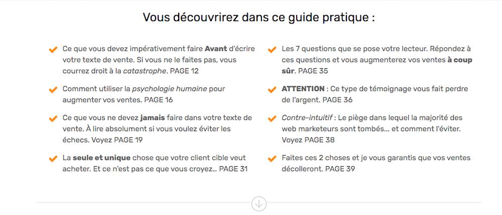 Ma landing page convertit à 74,17% ! Voici tous ses secrets - Exemple de Landing Page Wordpress 12
