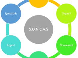Adaptez le contenu de votre blog pour convaincre via la méthode SONCAS et le MBTI 9